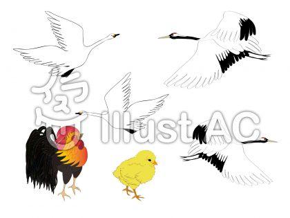 鳥いろいろセット2