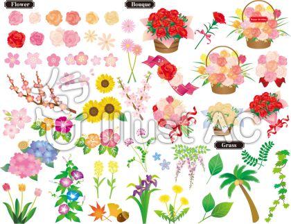 お花のセット