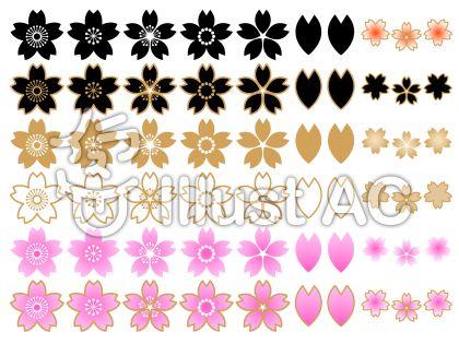 さくらの花セットA(白背景)