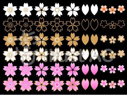 さくらの花セットA(黒背景)