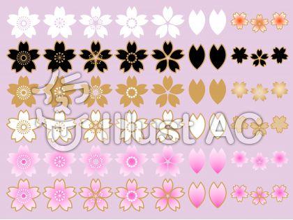 さくらの花セットA(淡紅藤色背景)