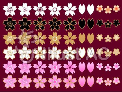 さくらの花セットA(葡萄色背景)