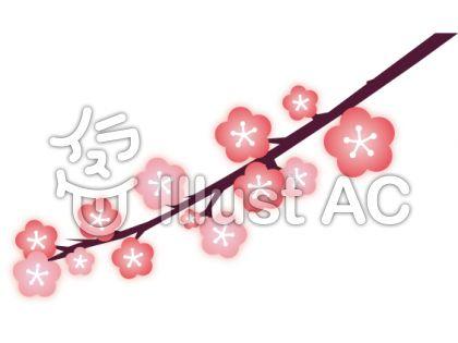 梅の花枝付き