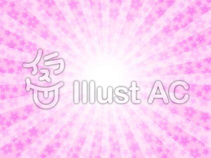 太陽と桜の花イメージ(ピンク)