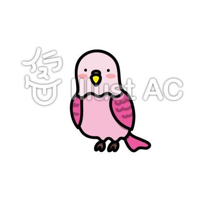 ピンクのインコのイラスト