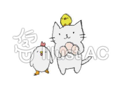 鳥と卵と猫