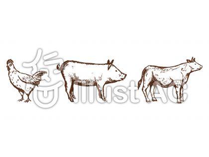 鶏 豚 牛 手描き