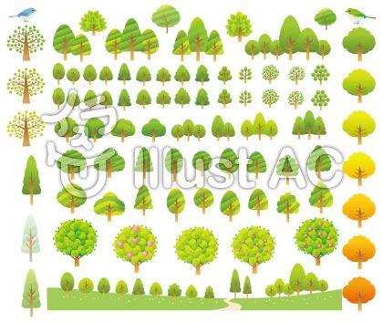森の木いろいろセット