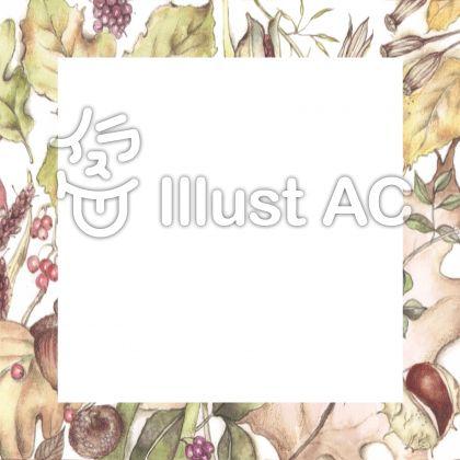 秋の花枠―フレーム