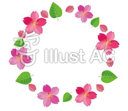 桜の花の葉