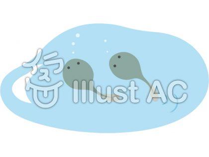 カエル_池