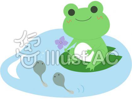 カエル_親子