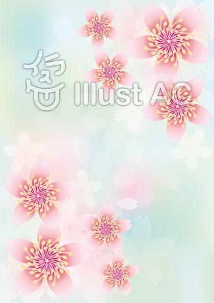 桜花爛漫278