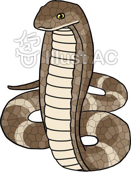 キングコブラ(黒模様無し)