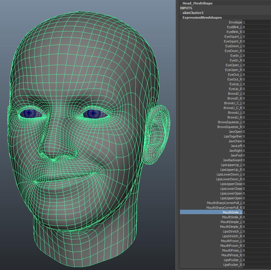 表情筋のサンプルデータ