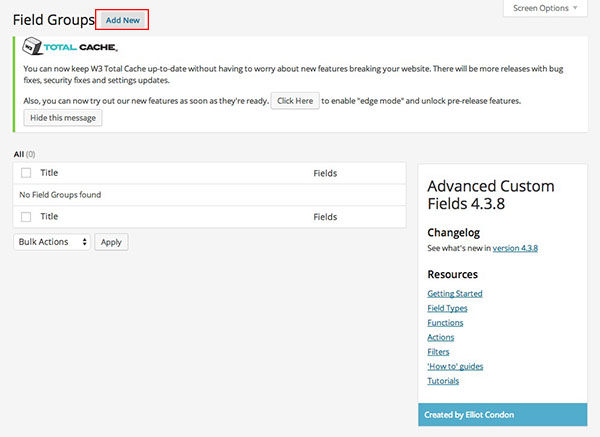 You will see this screen after clicking the 'Advanced Custom Fields' menu item.