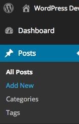 WordPress Dashboard posts