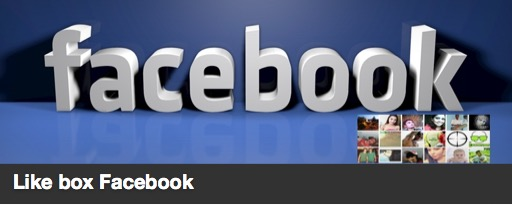 The like box Facebook plugin image