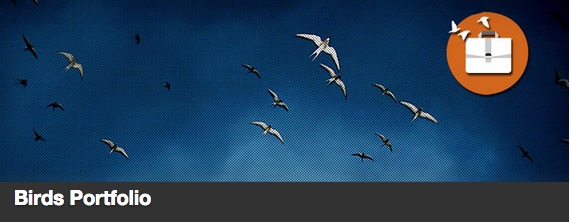 The Birds Portfolio plugin thumbnail