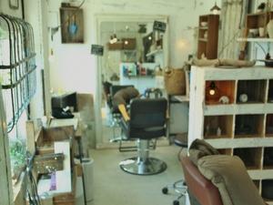 sola hair gallery