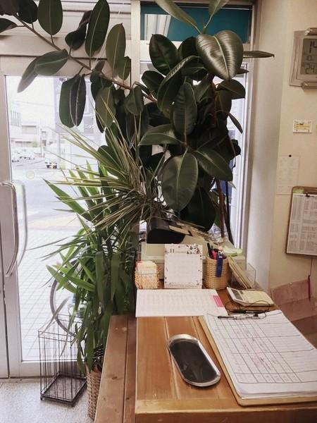 フォーラム 日野店の店舗画像5