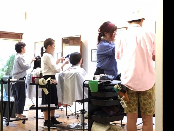 SEIJI MODE BUREAU IOGIの店舗画像1