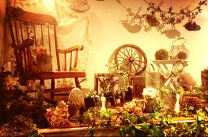 gallyの店舗画像1