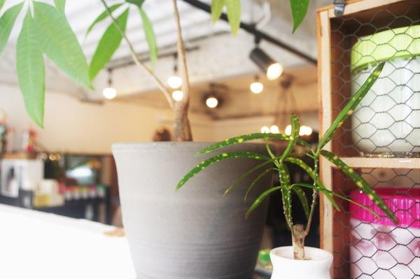 デジャヴヘアデザインの店舗画像0