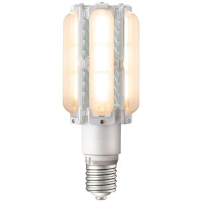 LEDライトバルブ(電球色・250W)