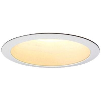 LEDiocLEDダウンライト φ100 電球色(3000k)