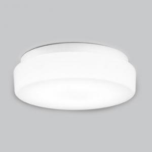 オーデリック屋外用LED共用灯 FCL30W相当