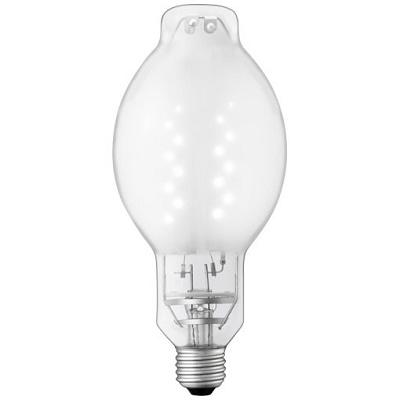 岩崎電気 LEDioc LEDライトバルブG 22W (昼白色) 〈E26口金〉