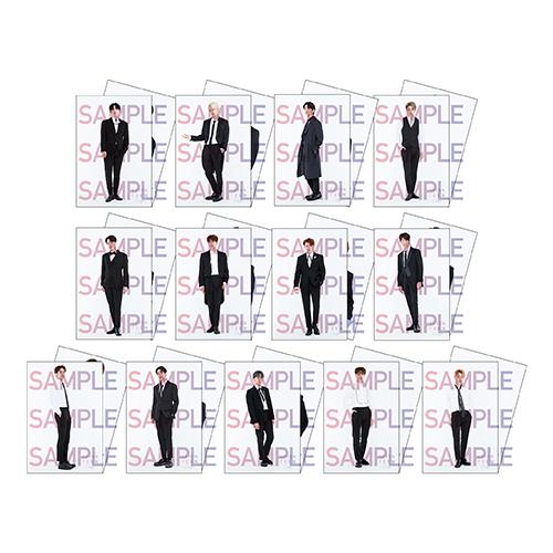 ポストカードセット(全13種)