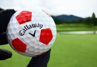 ゴルフをやっている人