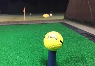 ゴルフボールケースに