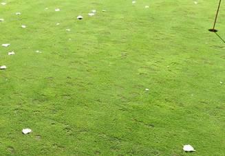 ゴルフのルールを覚え