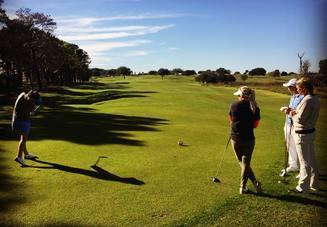 ゴルフのアイアンでひ