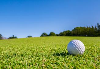 おすすめのゴルフボー