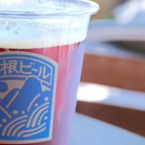 箱根は温泉だけじゃない!ロマンスカーで魅惑のかまぼこ&激レアのツナサンドを食べに。