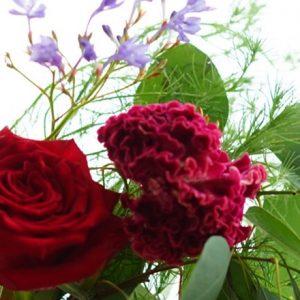 華やかなお花の定番「バラ」を長持ちさせる為の3ポイント!