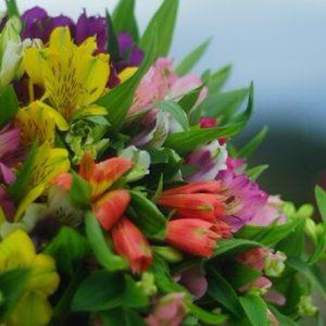 長野でとびきりの花を育てる〈信州片桐花卉園〉の片桐さん。