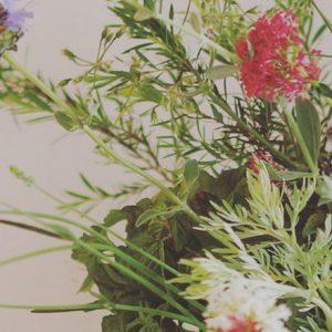 暮らしに取り入れたい、癒しの草花「ハーブ」の楽しみ方