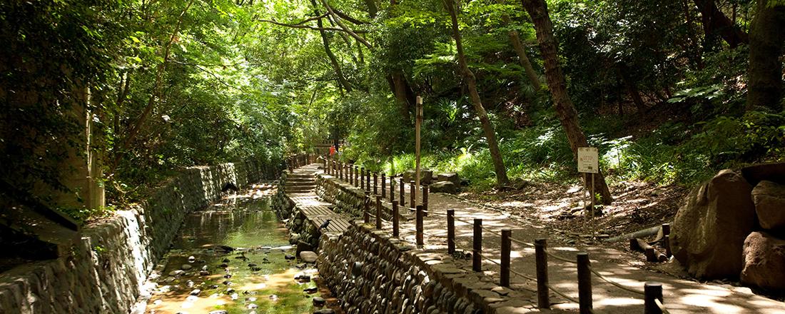 行くだけで幸せになれる!?パワーチャージに訪れたい東京都内の公園7選