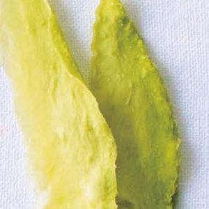 むくみや便秘改善など。人気野菜ソムリエおすすめ!ダイエットをアシストするフルーツとは?