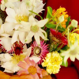 とびきりユニークで美しい。1輪からでも飾れる小花たち