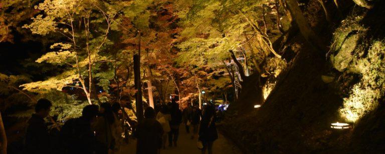 愛知の紅葉めぐり旅へ【前編】。もみじ饅頭の天ぷらや、トラフグ料理などご当地グルメも。