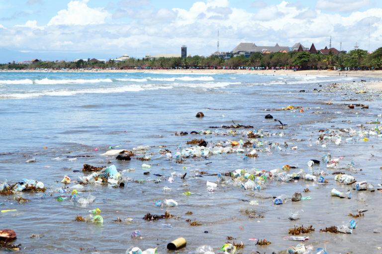 ストロー廃止で何が変わる?マイクロプラスチックごみが警告する海洋問題(前編)