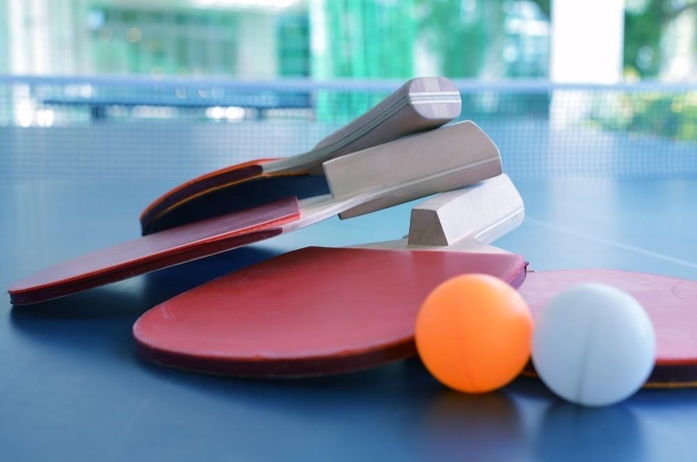 ビジネスで天下をとれないのでプロ卓球へ。「Tリーグ」チェアマンの武者修行