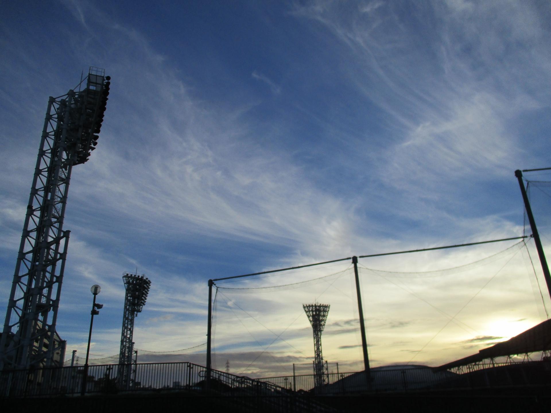 球春到来!プロ野球沖縄キャンプで、キャンプのメッカはどれほど賑わうの?