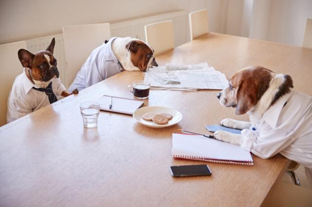 正社員と契約社員の格差は? 満足度や待遇を比較